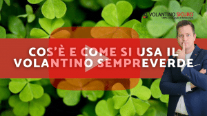 volantino evergreen sempreverde